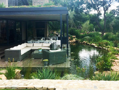 Natural Pool and Rooftop Garden: 2 Years Later