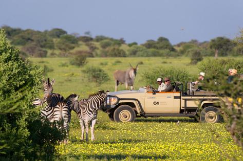Shem Images - Photo Safari