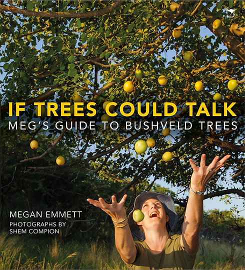 If trees could talk.jpg