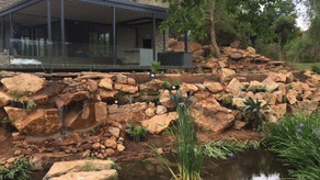 Blair Athol Pond & Roof Garden