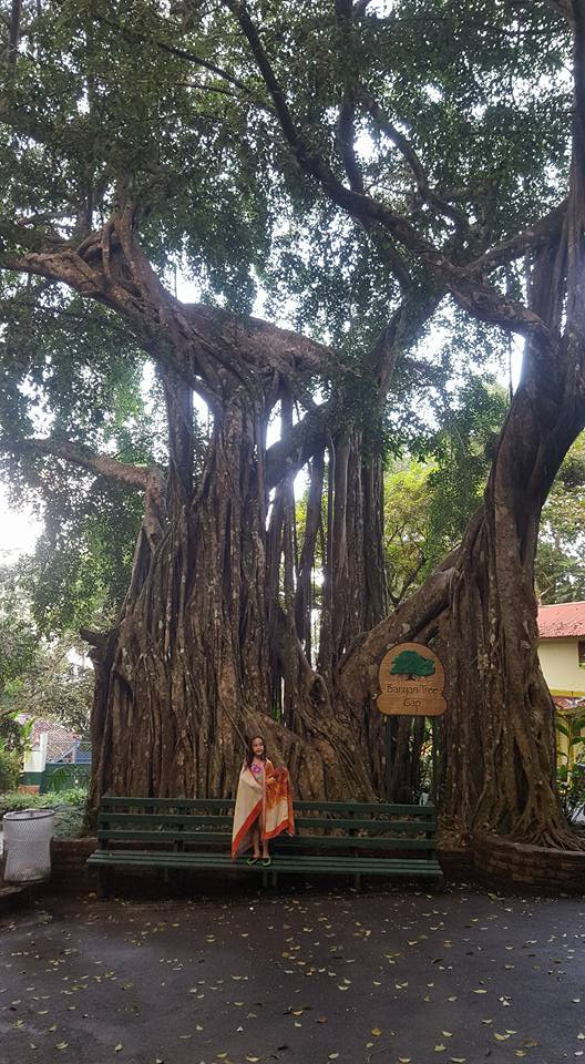 My daughter in front of a Banyen Tree in Ocho Rios, Jamaica