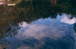 Reflective Sky