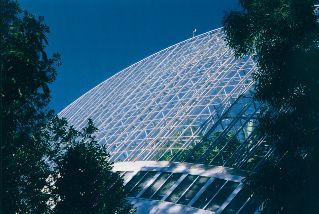 Modern Glasshouse