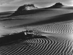 Moana Dunes