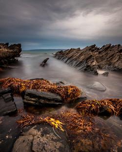 Bruce Barnes Fishery Beach 2