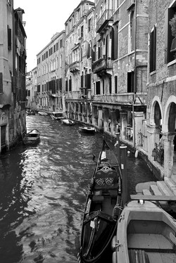Mark Dwyer Venezia
