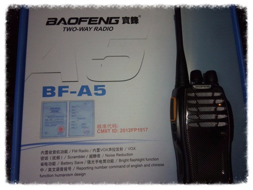 Baofeng BF-A5 with FM radio