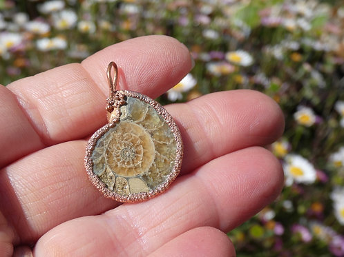 Ammonite Fossil and Copper Alchemy Energy Amulet