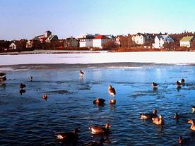 iceland%20reykjavik%202_edited.jpg