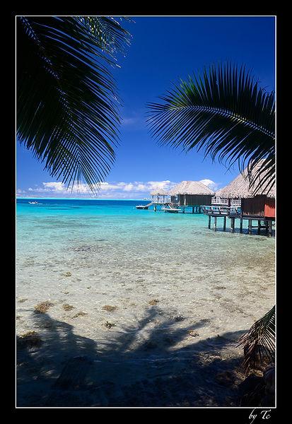 Bungalow à Bora Bora