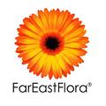 Far East Flora.png