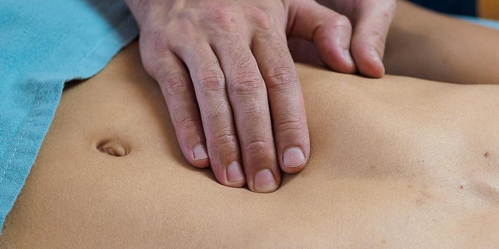 Japanische Akupunktur - Strukturelle Dysbalancen mit Hedi Holschuh - AUSGEBUCHT