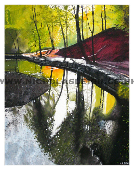 Grizedale Beck Unframed Print