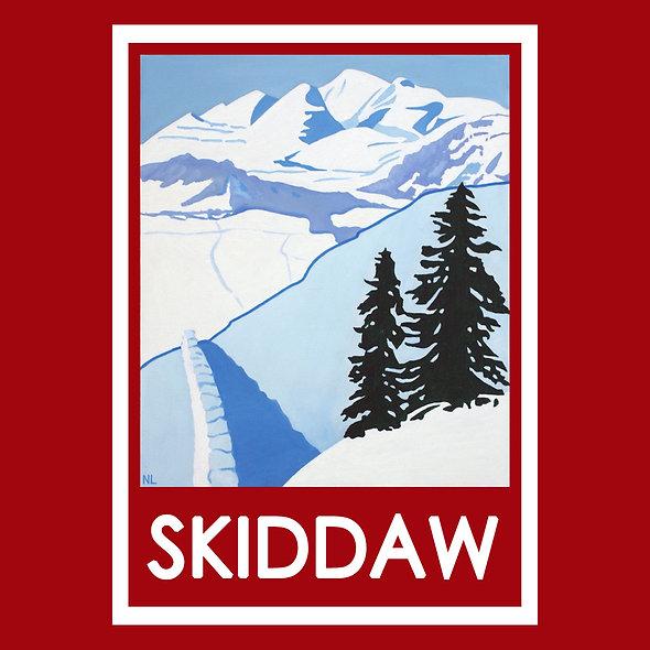 Skiddaw Coaster