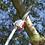 Thumbnail: Pilarka na wysięgniku MasterCut QJB280