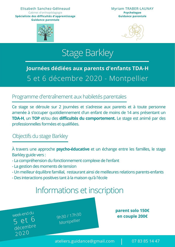 Stage Barkley affiche.jpg