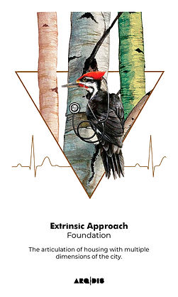 Extrinsic-Approach-01.jpg