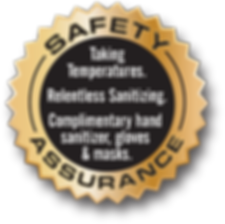 safety logo.png