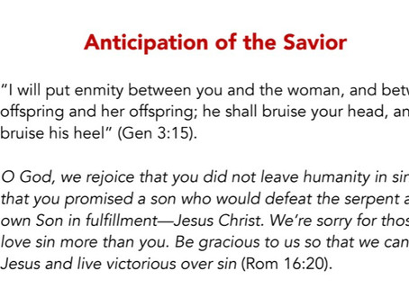 Check in daily for scripture reading to celebrate the Christmas season and birth of Christ.