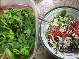 Raw Food Prepping