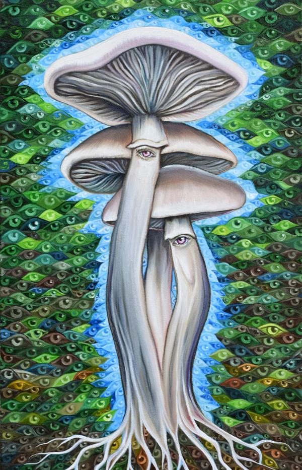 11. Mushroom medicine