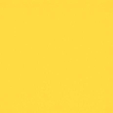 אמרילו לימון צהוב E67