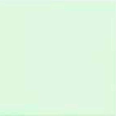 ורדה ירוק בהיר 658
