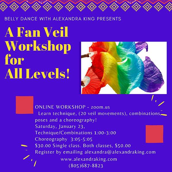 Fan Veil Workshop.png