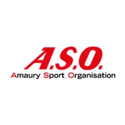 logo ASO.png