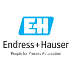 Endress + Hauser.png