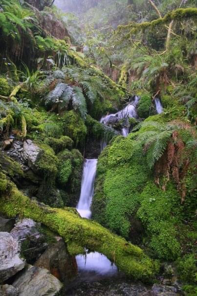 New Zealand - Routeburn Trek