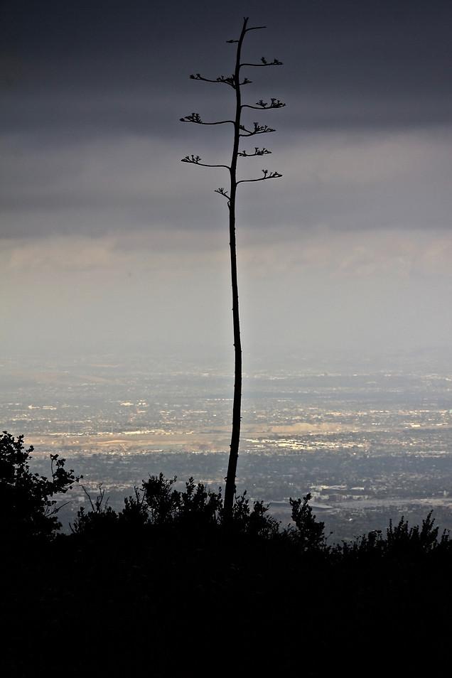 AK Lechner _CA_Landscape_Photography