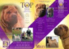 Ashowai Brochure.JPG