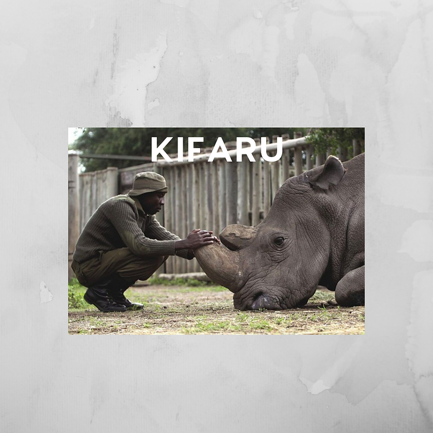 Documentary Series Film: KIFARU
