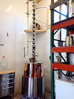 Our First Still Kirby