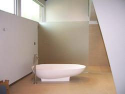 Glass - Glass Bathroom Divider
