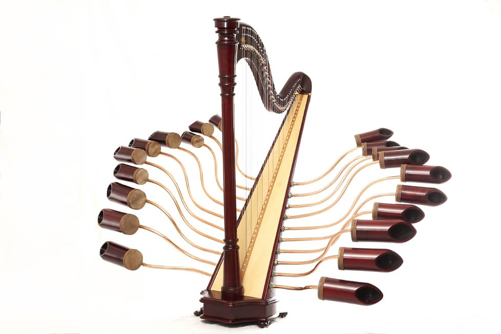 harp---.jpeg