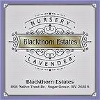 Blackthorn Estates 2.5 x 2.5 logo color.