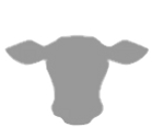 cowhead-gray-transparent.png