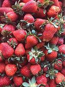 BuenaVista_Strawberries.jpg