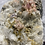 Thumbnail: Mixed Crystal Cluster