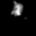 logo centre equestre trans noir.png