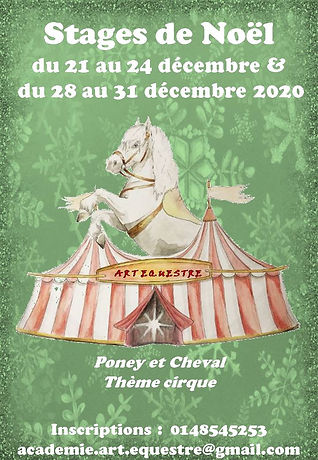 Stages_de_Noël.jpg