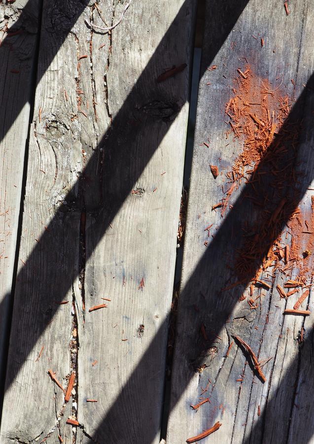 Logwood spill