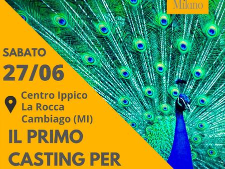 27/06 Casting per Animali - Club Ippico La Rocca - Cambiago (Mi)