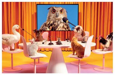OILET PAPER  Riunione tra vecchi amici 🦉🐕🐇🐐🐓🐈🦢 Immagine pubblicata nel nuovo numero di ToiletPaper Magazine  Animal Spot Milano  @mauriziocattelan @toiletpapermagazineofficial Maurizio Cattelan