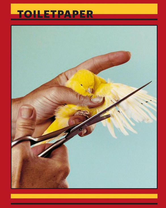 TOILET PAPER  Animal Spot Milano Immagine di copertina ToiletPaper Magazine con l'aiuto e le mani di @giulia_pasqualetti Maurizio Cattelan