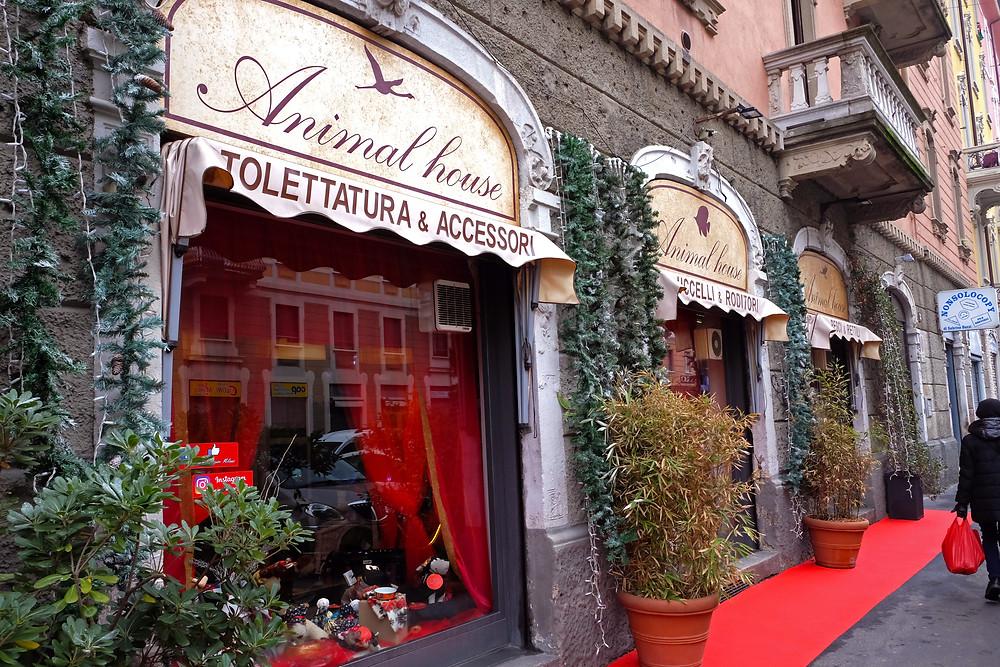 negozio di animali a Milano