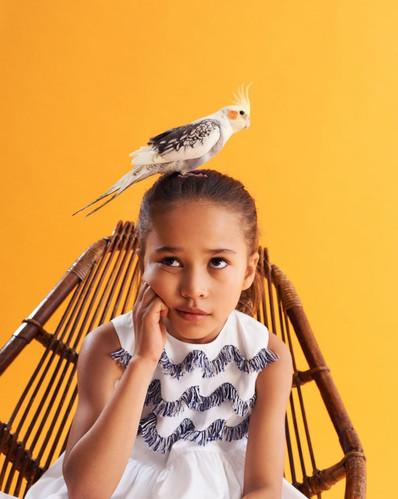 Il gufo official - video e foto - Kids Island