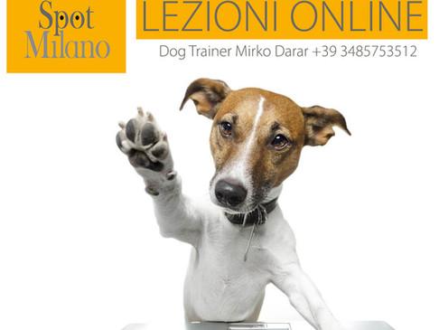 Lezioni Online - Addestramento